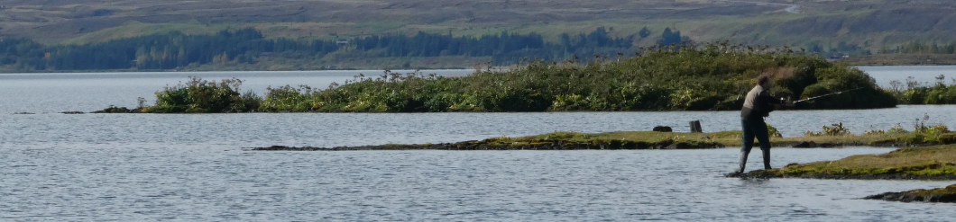 Island Pingvellir