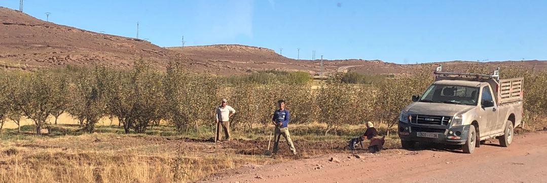 Berber in Marokko